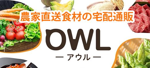 オンライン注文 OWL